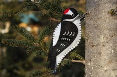 A Downy Woodpecker Felt Ornament from Downeast Thunder Farm