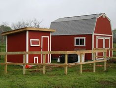 Every one who can use a saw, hammer and some other tools can build his own chicken coop.