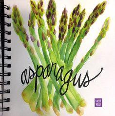 watercolor sketch in the art journal book… www.twig2neststudio.blogspot.com