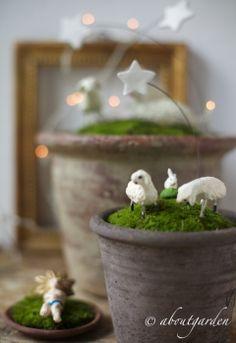 #sharenatalealverde  Presepe in vaso per Natale al VERDE