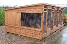 Multiple dog kennels with galvanised steel mesh rather than steel doors