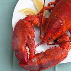 eat a whole lobster how to lobster joe main how to cook whole lobster ...