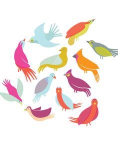 bird graphic, beauti bird, meg gleason, color, art, birdi, bird illustr, bird of paradise, birds