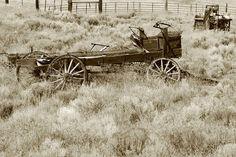 old horse wagon hors carriag, hors wagon