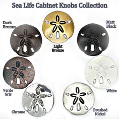 Sand Dollar Drawer and Cabinet Knobs beach-style-bathroom-vanities-and-sink-consoles