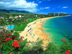 Hawaii - because it looks beautiful!