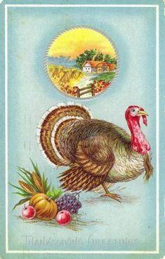 Vintage Thanksgiving Postcard vintage postcards, thanksgiving turkey, cardthanksgiv, thanksgiv card, vintag thanksgiv, thanksgiv turkey, card thanksgiv, thanksgiving cards, thanksgiv postcard