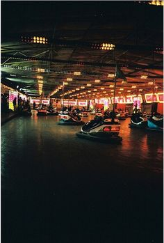 bumper cars never get old! love it!
