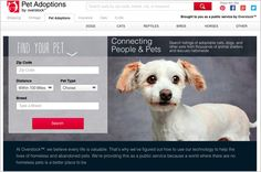 Our Guide to Pet Adoption Websites