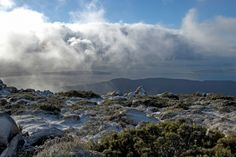 Daily Travel Photo - Tasmania, Australia