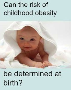 parents role in childhood obesity essay We will write a cheap essay sample on childhood obesity was childhood obesity and the parents perception role in addressing childhood obesity.