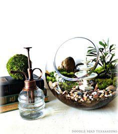 English Garden Terrarium #cuteidea #gardening #picnictime