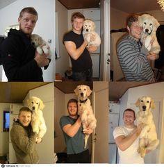 #Puppy #Labrador Retriever #Dog