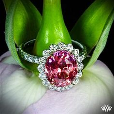 """""""Imperial Lotus Padparadscha Halo"""" Right Hand Ring"""