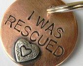 Rescue a dog!