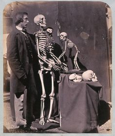 Reginald Southey and Skeletons - 1857  by Lewis Carroll (Charles Lutwidge Dodgson)     Reginald Southey was a member of the English Lunacy Commission in the late 19th Century.