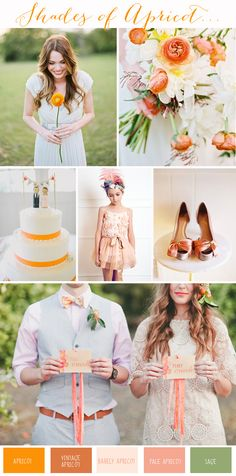 Wedding Colour Inspiration | Shades of Apricot