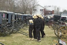 Buggies for sale at a Mud Sale in Lancaster County, PA