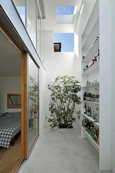 inside out #interior #tree #concrete