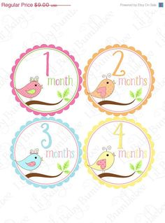 BDAY SALE Monthly Onesie Stickers  by LittleBabyBumblebee on Etsy, $7.29