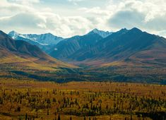 Yes, you will find fall color on a September Alaska Highway road trip. Glenn Highway (also the Tok cutoff) travels from Tok to Anchorage. Be sure to stop at Eureka summit for this awesome view.
