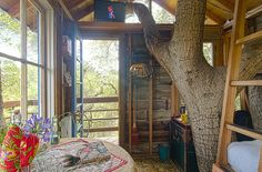 Tree house by Doug Studebaker