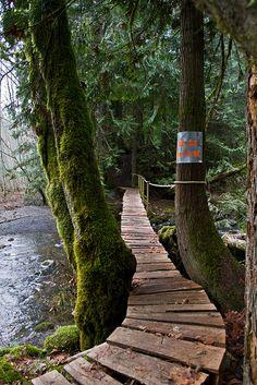 Risky Bridge, Vancouver Island, Canada photo via mywonderland