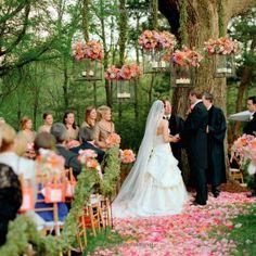 outdoor ceremony under a big tree