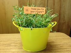 """Thank You For Your """"Thyme"""" gift for parent volunteers.  Cara A. gave me the idea 15 years ago and I still use it!"""