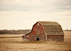 field, farmer, red barns, radlab, old barns