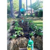 Straw Bale Gardening...so smart