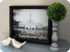 This is Our Happily Ever After Temple Pictures