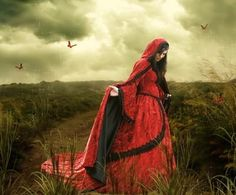 I found 'Velvet Fantasy Renaissance Medieval Fairy Set with Cape~' on Wish, check it out!