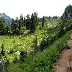 Pacific Crest Trail - California/Nevada | 12 Hiking Trails That Will Take Your Breath Away