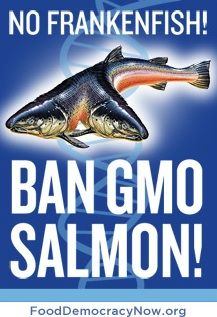 Tell President Obama and the FDA that you won't eat GMO salmon!  Read more and sign the petition!