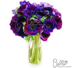 Fresh anemone flowers are a beautifully feminine flower that packs a bold, graphic punch, working equally well with either a vintage or modern-style wedding. Violet/Purple anemones have brightly saturated, fluttery petals with high-contrast black centers. Petals range in tone from royal purple to blue to burgundy. Anemone flowers (also called 'wind flowers') are said to represent anticipation and luck.  Take advantage of Free Shipping on your wholesale anemone flowers! $149