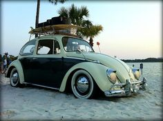 Beach Beetle