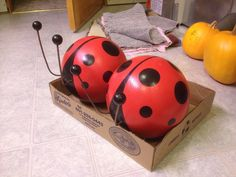 Bowling Ball Lady bugs for my gardens.  Very easy to make