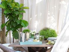 6 Ways to Make Your Outdoor Space Private