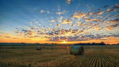 @CalamityJane264- Northern Illinois Sunrise #TODAYSunrise