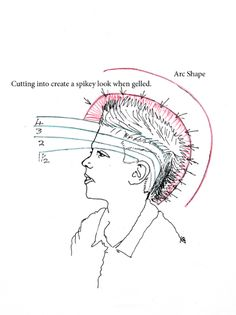 http://www.how-to-cut-hair.co.uk/blog/wp-content/uploads/2011/05/jmhlook-diagram-3a.jpg