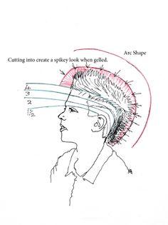 http://www.how-to-cut-hair.co.uk/blog/wp-content/uploads/2011/05/jmhlook-diagram-3a.jpg