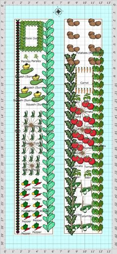 Garden Plan - 2013: Shepherd's Garden #Garden_Plan