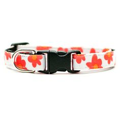 Our Daisy Collar is now featured on Fab. Hurry, this special sale only lasts 5 more days! #fab #cat #catcollar #etsy