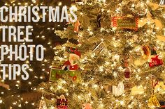 Christmas Tree Photo Tips via lilblueboo.com