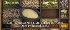 Heirloom Seeds - Non Hybrid Open Pollinated Seed Survival Seed Bank