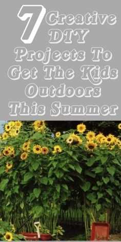 diy home sweet home: 7 Creative Ways To Get Your Kids Outdoors This Summer.