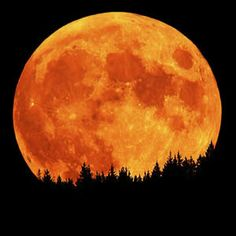 harvest moon, god, red, sky, orang, autumn, color, la luna, light