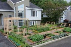 Lawn and Order: The Silly War on Home Gardening Escalates