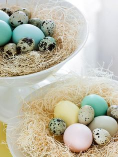 Pretty colored eggs